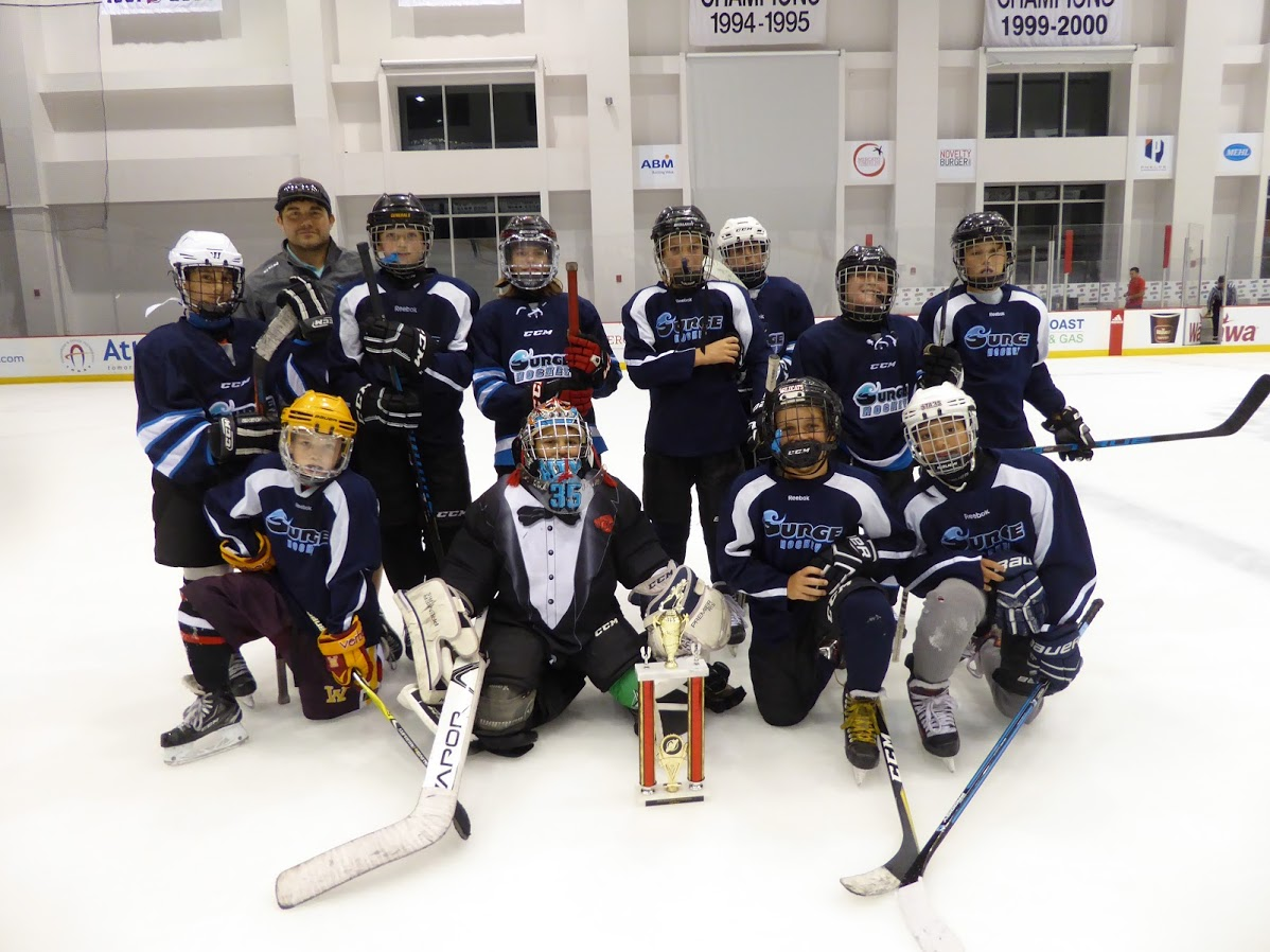 PeeWee AAA Division Runner-Up - Surge Hockey 2.0