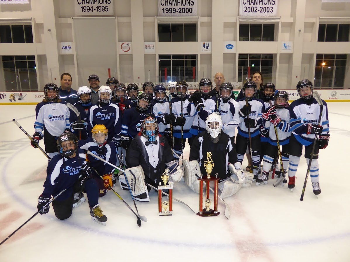 PeeWee Surge Hockey 1 & 2 Group Photo